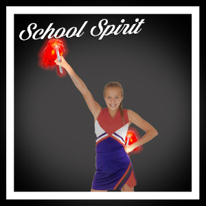 Cheer / School Spirit Products