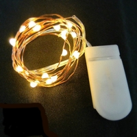 20 Warm White Fairy Lights, 39 Inch Wire