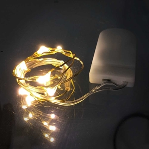 Short Wire Gold 20 Inch Fairy 10 Leds Coin Cell Batteries Firefly Mason