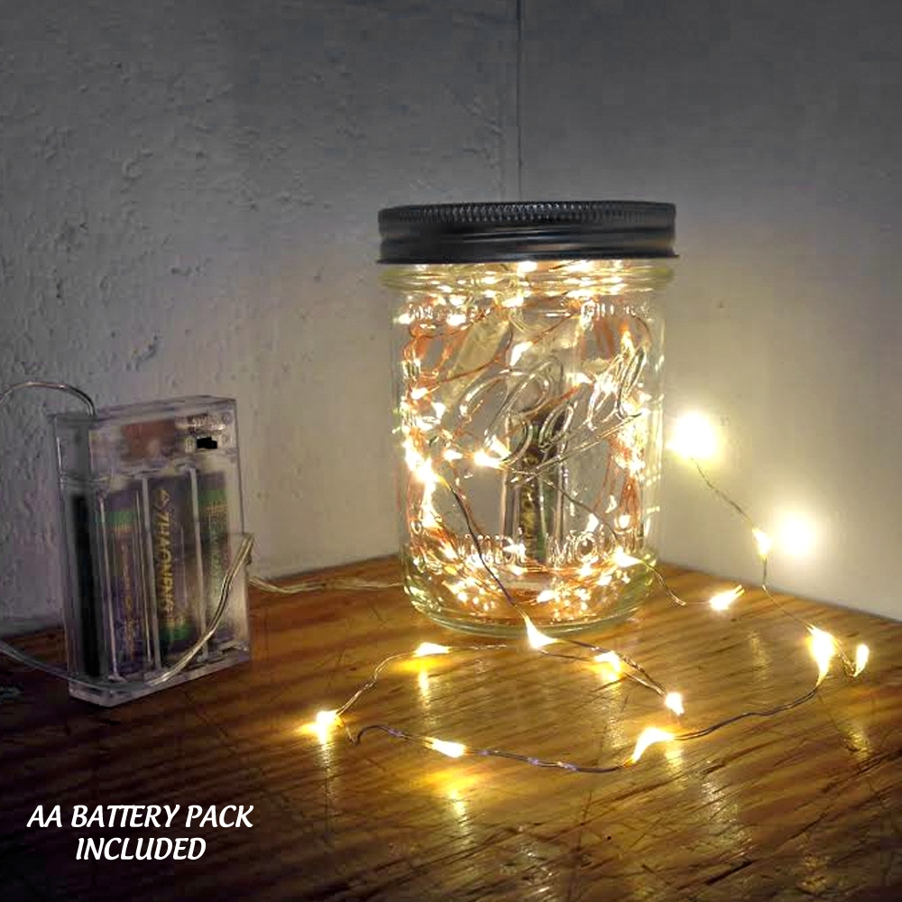 18 Led 3 Ft Wire String Light With Built In Timers