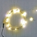16.5 ft Fairy Wire, 50 Warm White LEDs, Power Option: AA Battery Pack. Twinkle Light Function - TW50